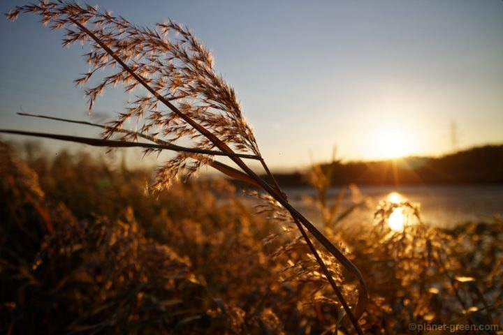モエレ沼の夕日