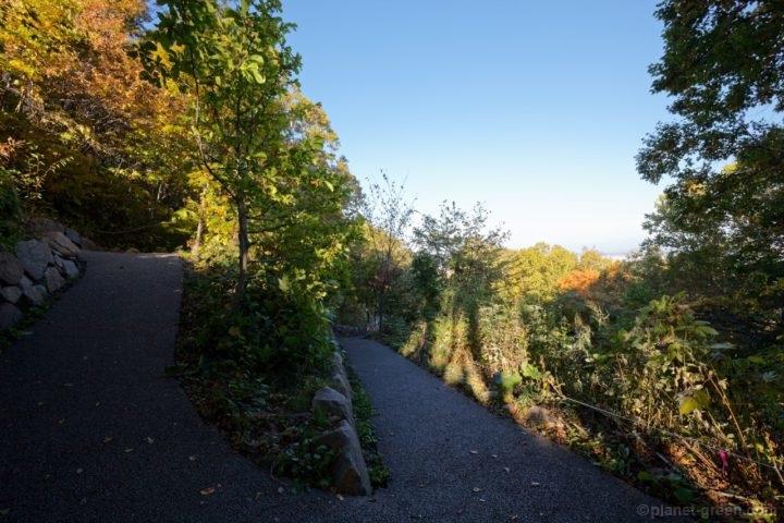 札幌市・藻岩山の自然学習歩道と呼ばれる舗装された登山道
