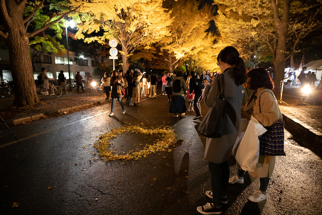 北大銀杏並木 / 北大金葉祭 2018 / ハートの落葉
