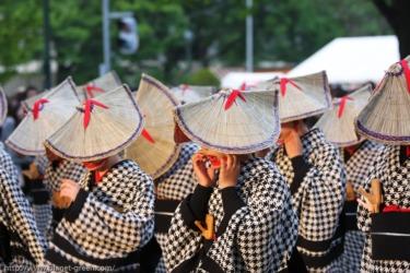 YOSAKOIソーラン祭り(2008年)